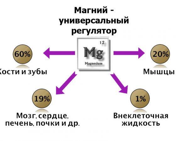 Великий маг МАГНИЙ